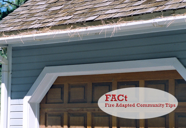 Keep rain gutters free of leaves and needles year-round. Photograph courtesy of University of Nevada Cooperative Extension.