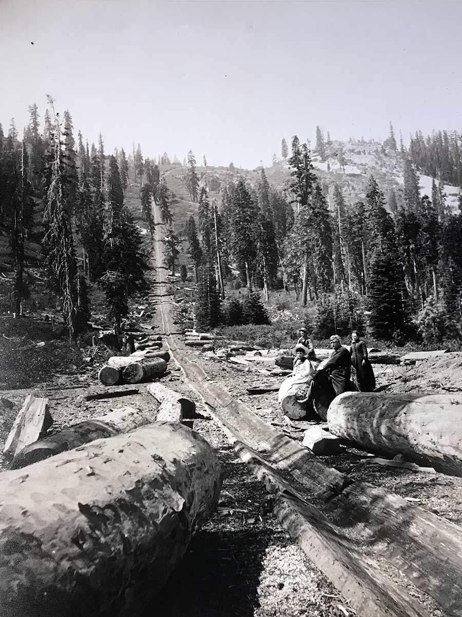 Log Chute West Shore Lake Tahoe 1855